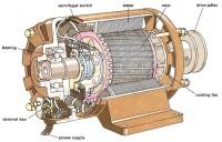 Động cơ điện Electric motors MOTOR A-S THAY ĐỔI TỐC ĐỘ BẰNG CÁCH ĐỔI CỰC P